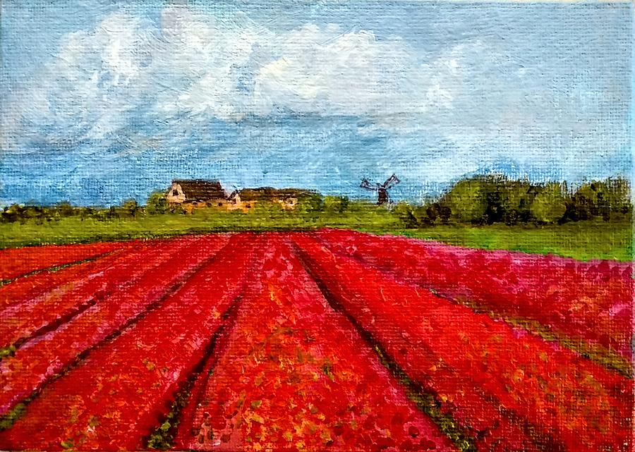Dutch Tulips farm by Asha Sudhaker Shenoy