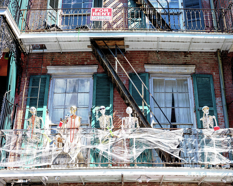 Dying to Rent in the French Quarter New Orleans by John Rizzuto