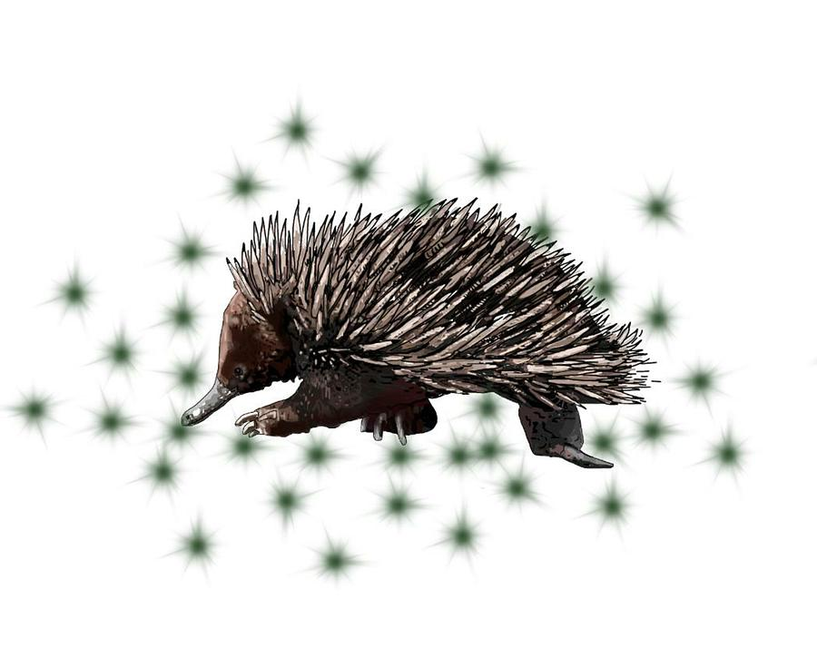 Stratton Digital Art - E Is For Echidna by Joan Stratton
