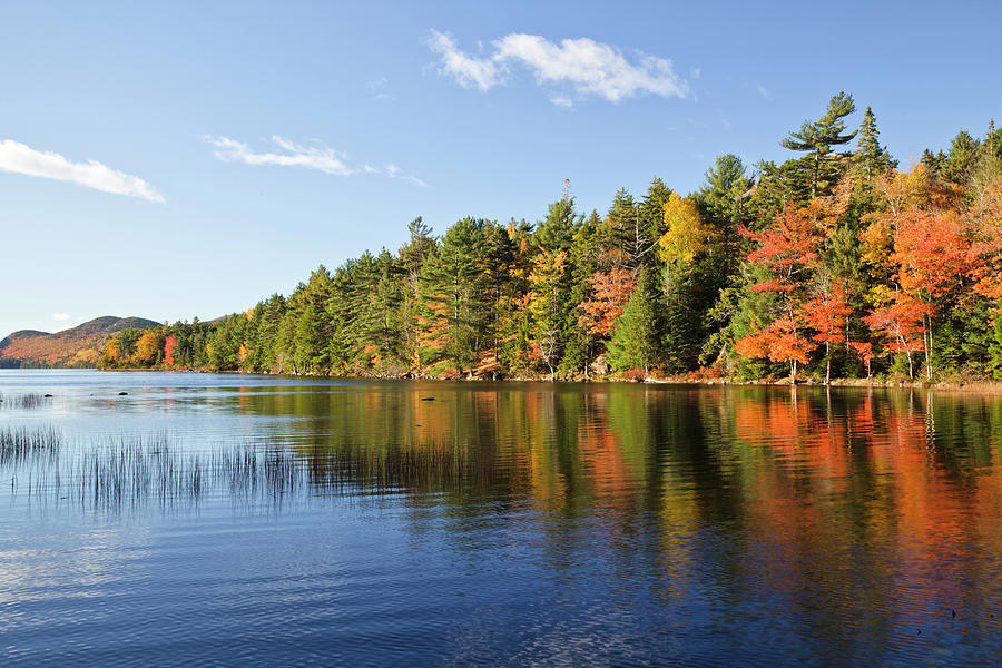 Eagle Lake Autumn Morning, Acadia Photograph by Picturelake