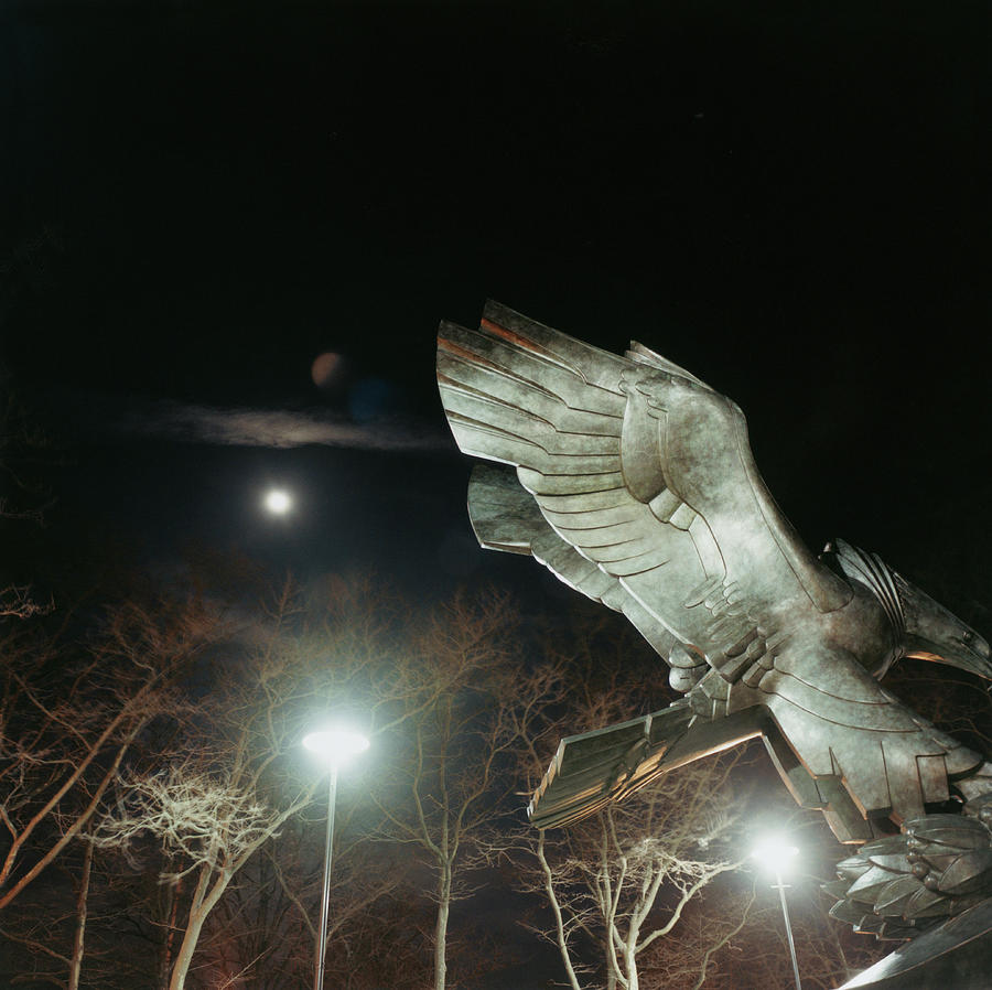 Eagle Statue Photograph by Silvia Otte