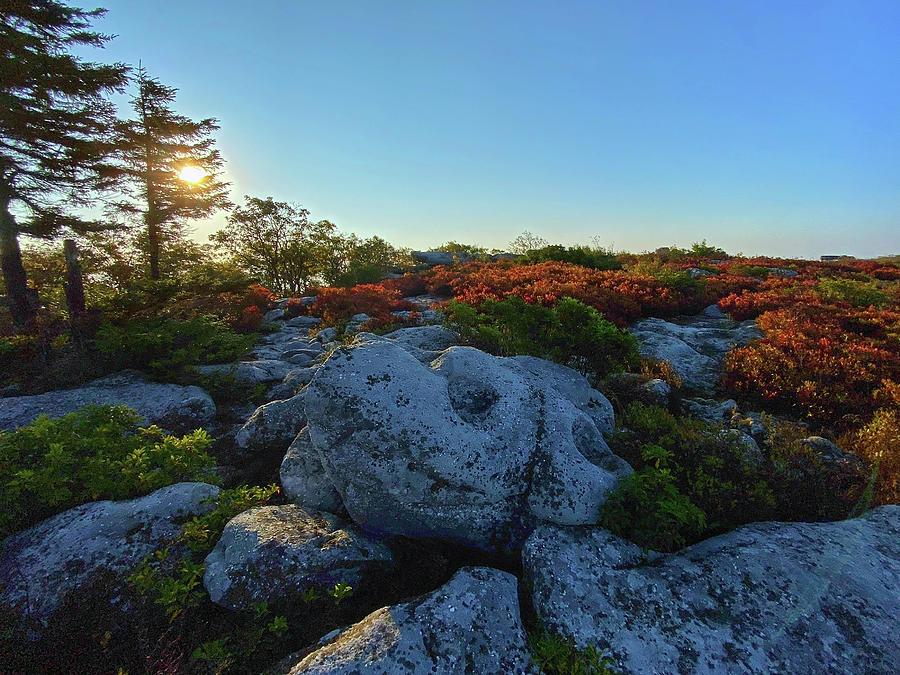 Early Morning at Bear Rocks by Lori Coleman