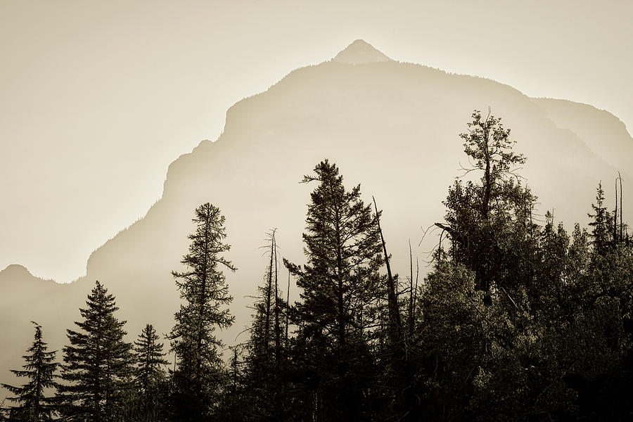 Early Morning Bristle Mountain Ridge by Roderick Bley