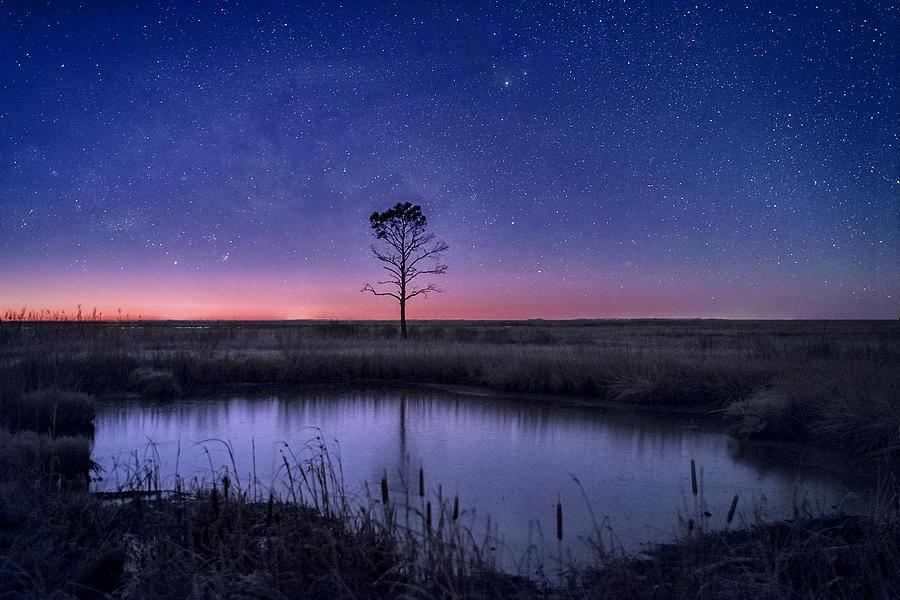 Early Morning Light  by Robert Fawcett