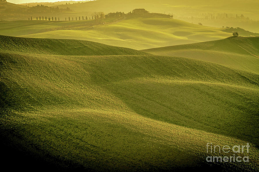 Early Morning on Southern Tuscan Farmland by Helga Koehrer-Wagner