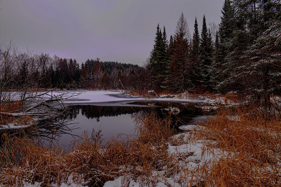 Early Winter On A Spring Fed Pond by Dale Kauzlaric