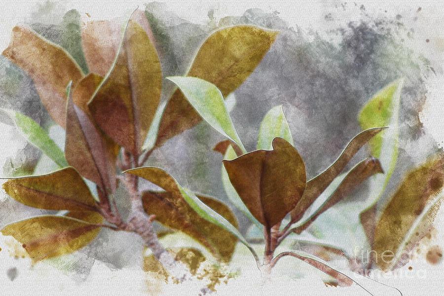 Watercolor Photograph - Earth tone Magnolia Leaves in Digital Watercolors by Colleen Cornelius