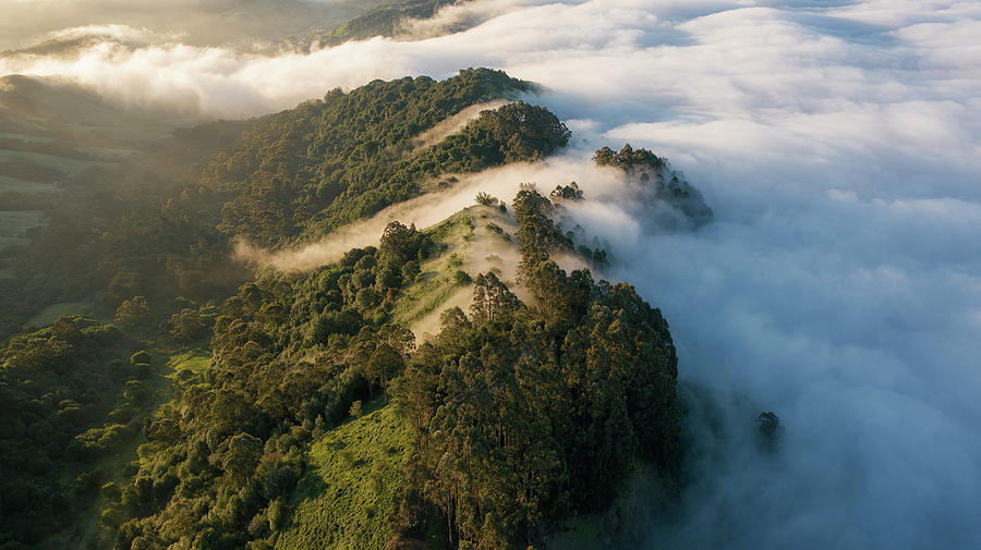 East Bay Morning Hills Photograph by Vincent James