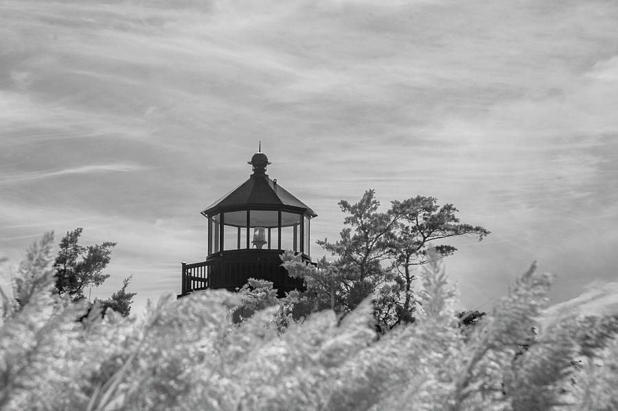 East Point Lighthouse lamp in sepia by Karen Foley
