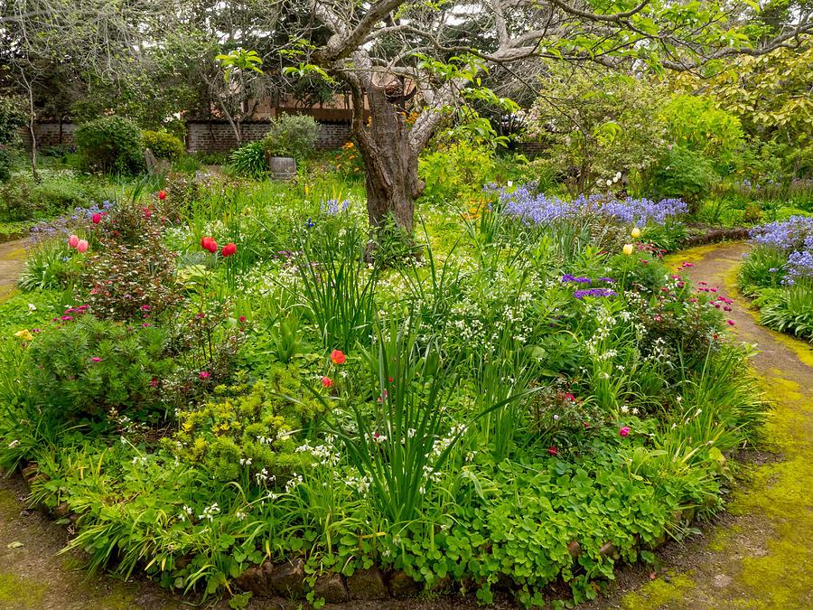 Easter Garden by Derek Dean