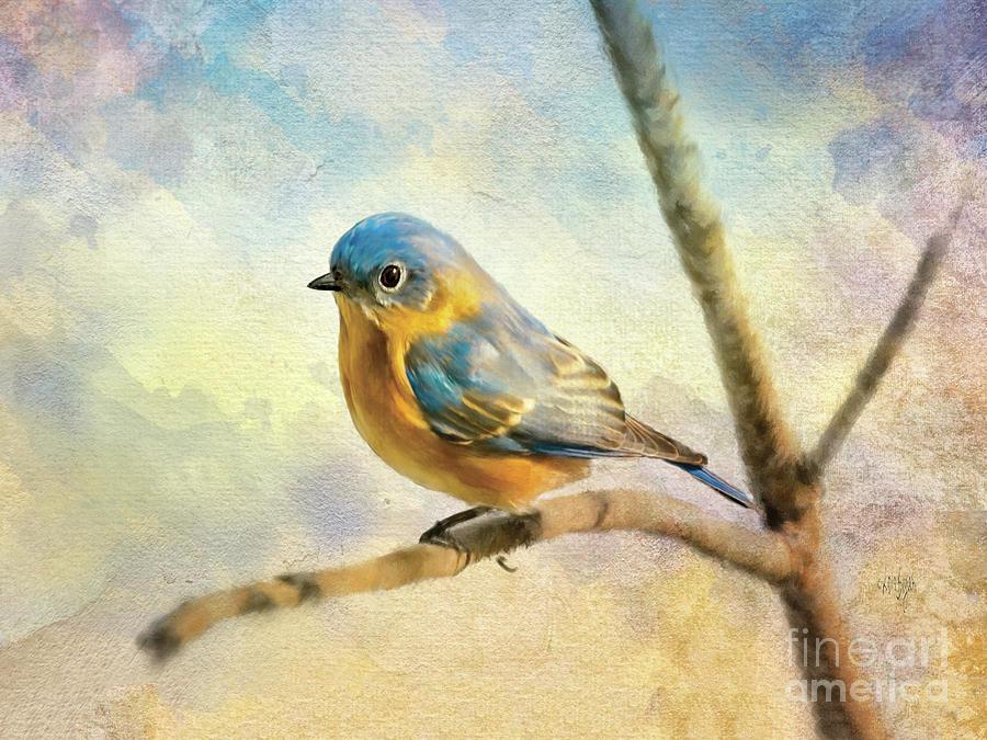 Eastern Bluebird On A Bluebird Day by Lois Bryan
