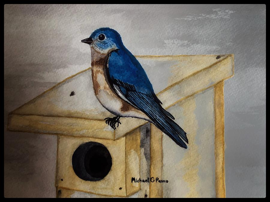 Eastern Bluebird W/ Boarder Painting