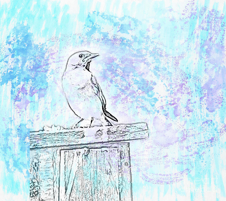 Eastern Bluebird - Watercolor Art by Kerri Farley