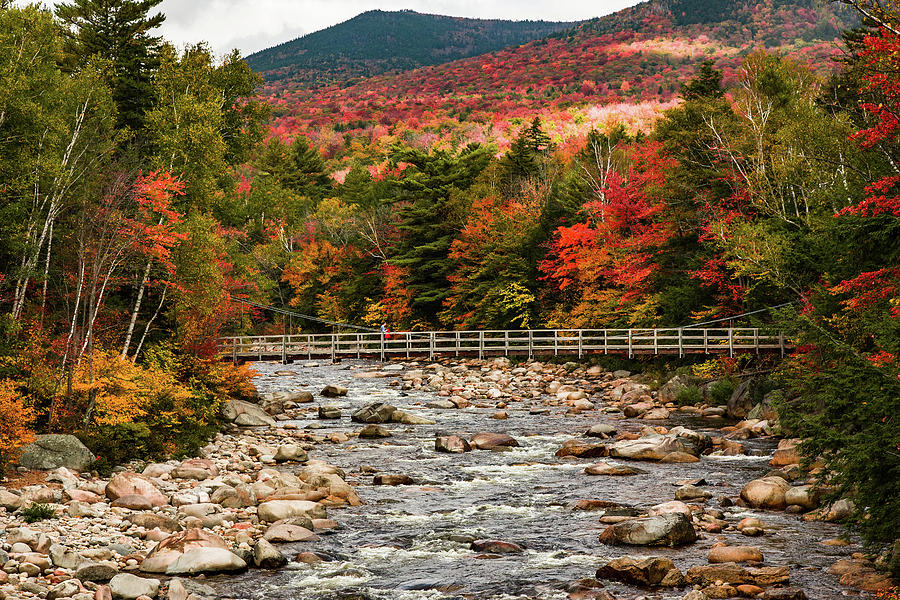 Eastern Branch of the Pemigewasset River by Jeff Folger