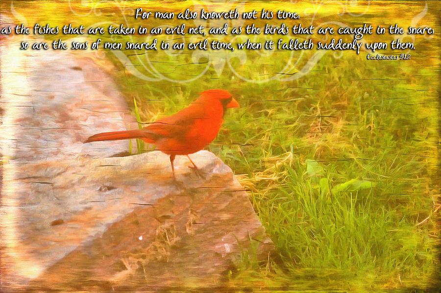 Ecclesiastes 9 12 Digital Art