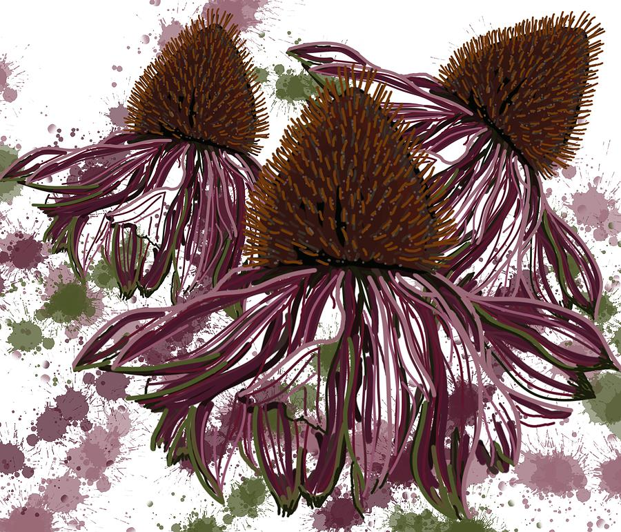 Echinacea Flowers Line by Joan Stratton