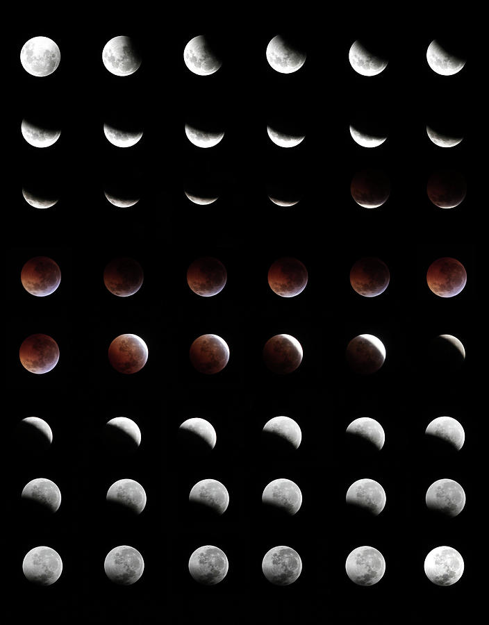 Eclipse, In All Phases Of The Moon Photograph by Arturogi