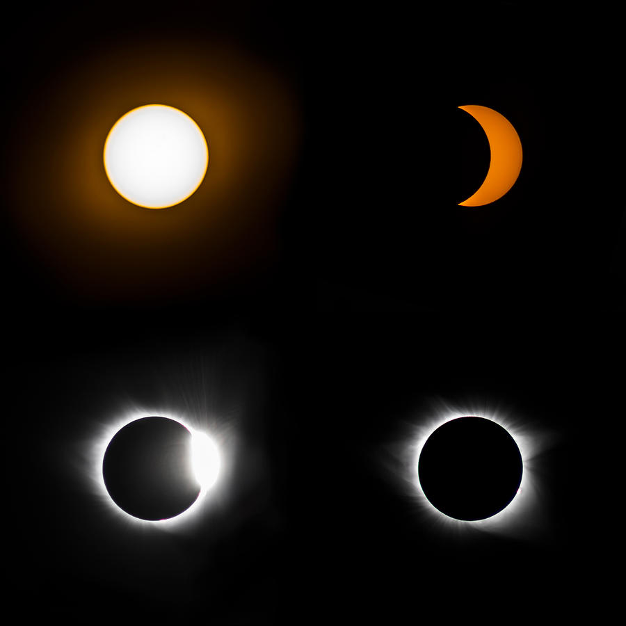Eclipse Photograph - Eclipse Phases by Christine Buckley