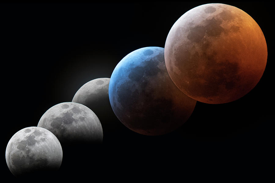 Composite Photograph - Eclipse Progression by Dave Wilson