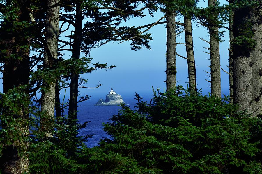 Ecola State Park by Walt Sterneman