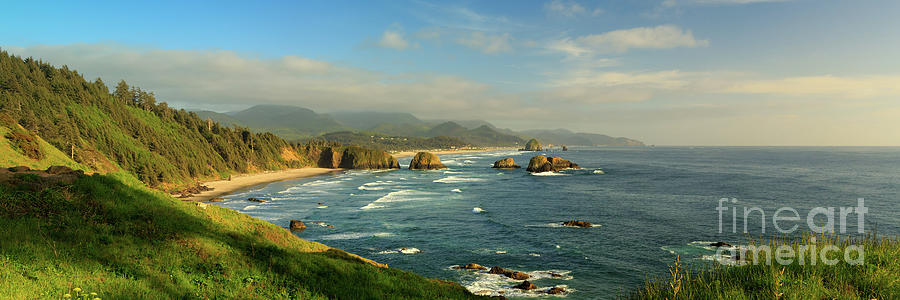 Ecola Vista by Beve Brown-Clark Photography