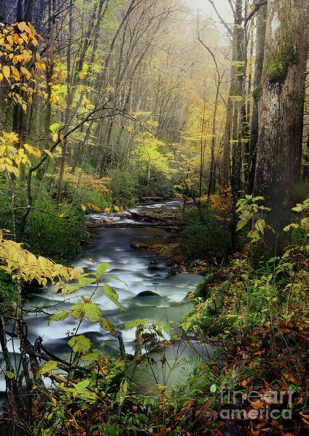 Eden Sunrise 2 by Rick Lipscomb