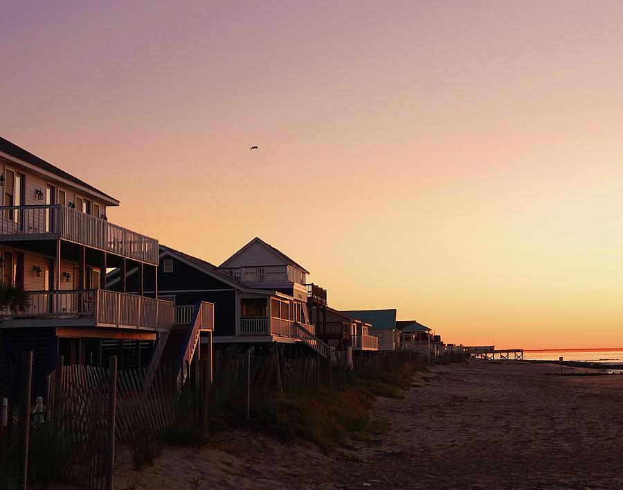 Edisto Beach at Dawn by CARL SHEFFER