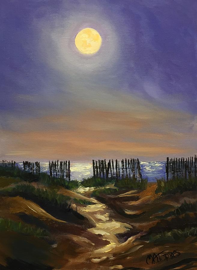 Edisto Dunes by Melissa Torres