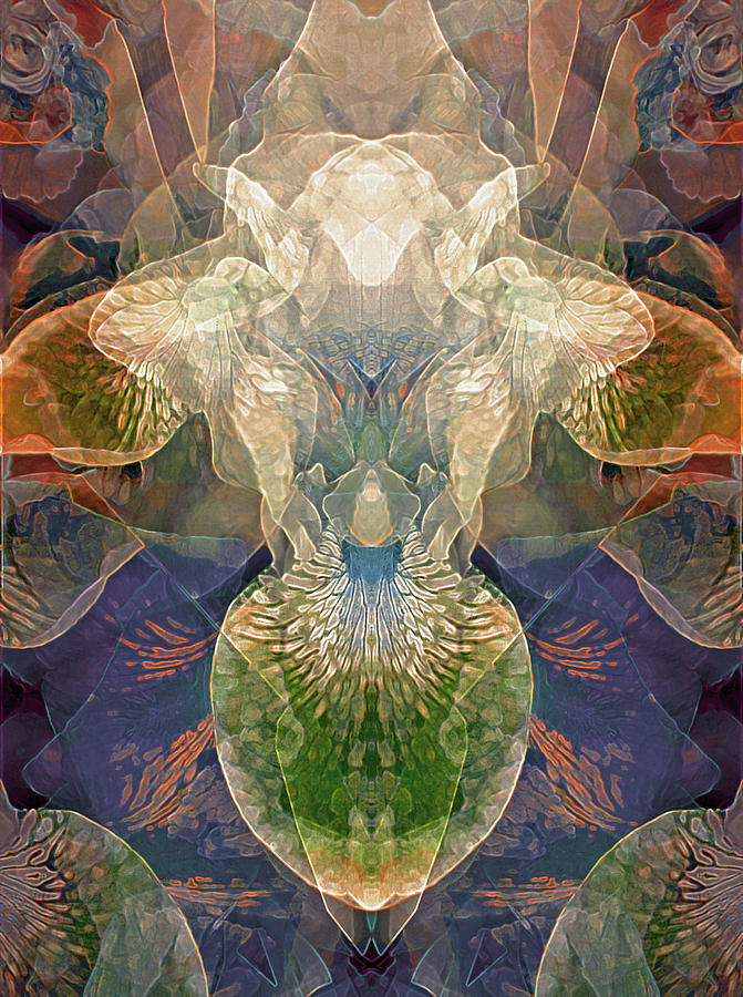 Efflorescence in Rainbow Tones by Lynda Lehmann