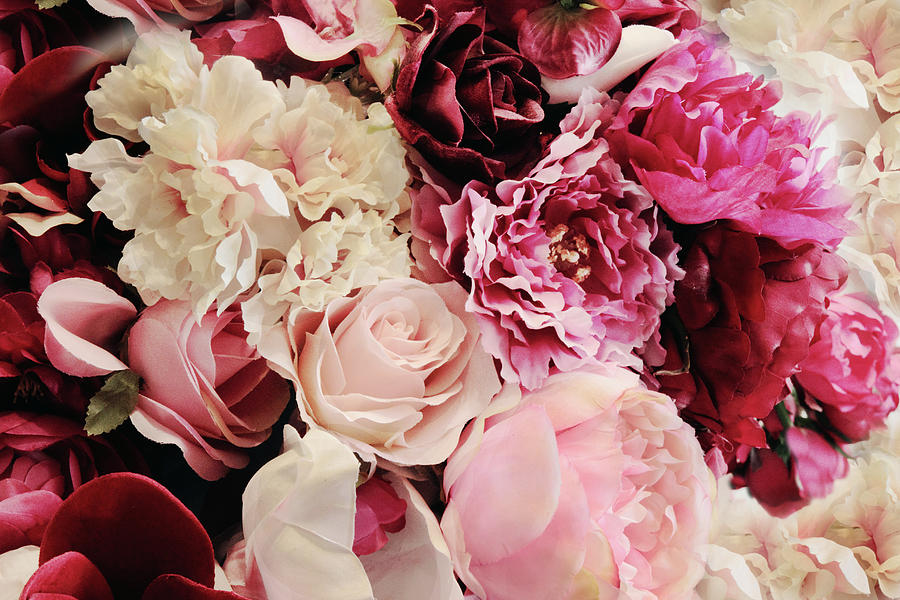 Roses Photograph - Efflorescence by Jessica Jenney