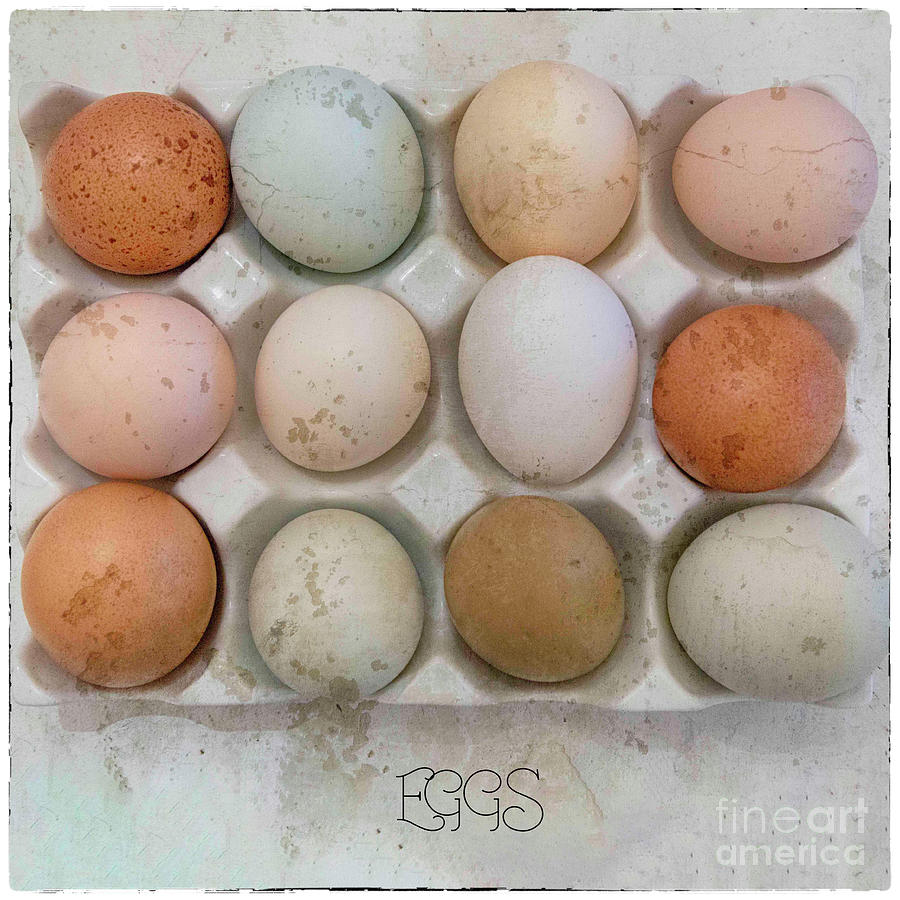 Eggs by Natural Abstract Photography