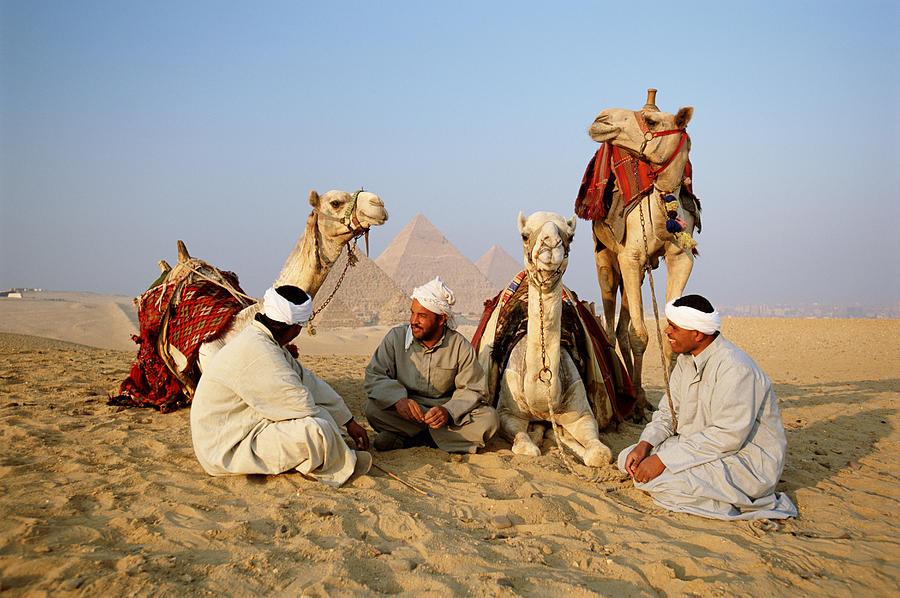 Egypt, Giza, Camel Drivers Having Rest Photograph by Frans Lemmens