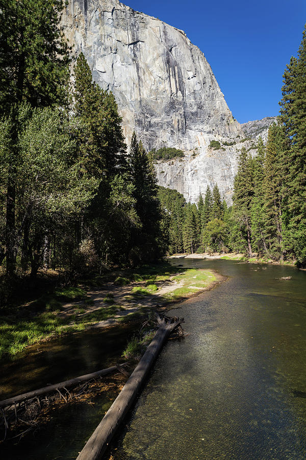 El Capitan in Yosemite National Park by Kathleen Scanlan