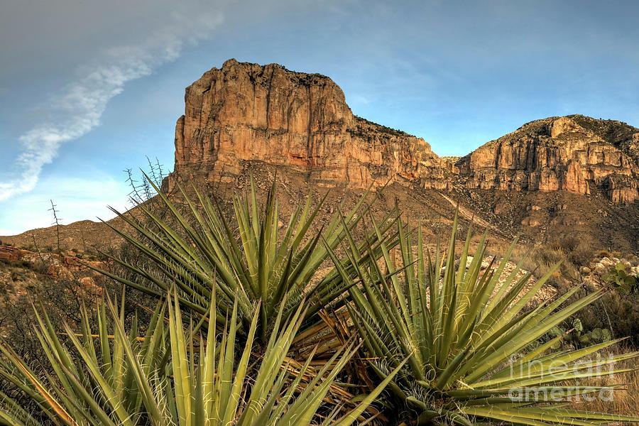 El Capitan Photograph - El Capitan of Texas by Joe Sparks