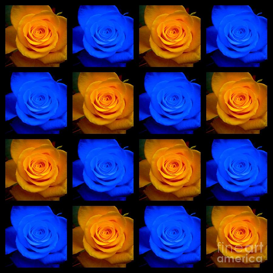 Electric Blue and Gold Roses by Joan-Violet Stretch