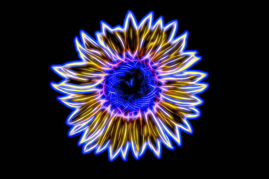 Electric Sunflower by Karen Silvestri