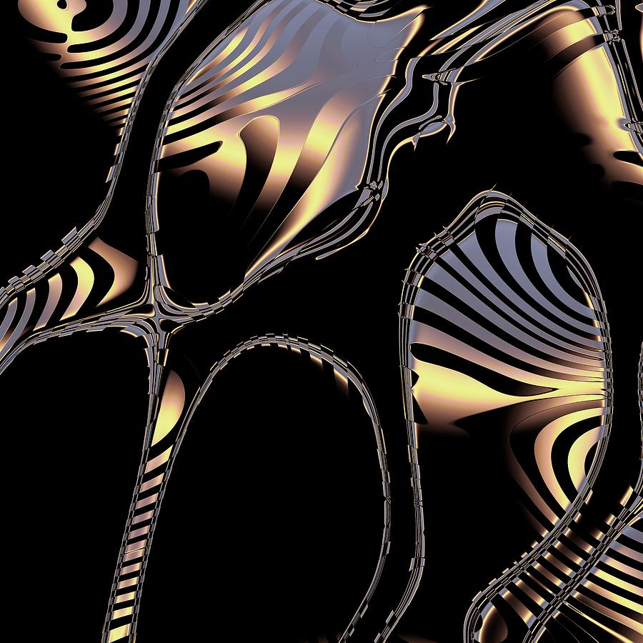 Elegant Black Fractal 1 by Judi Suni Hall