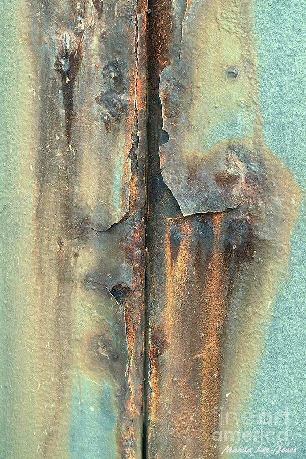 Element Design by Marcia Lee Jones