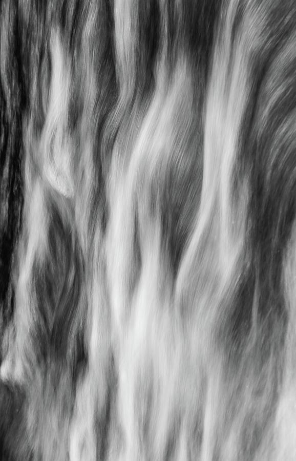 Elemental  by Dan Sproul