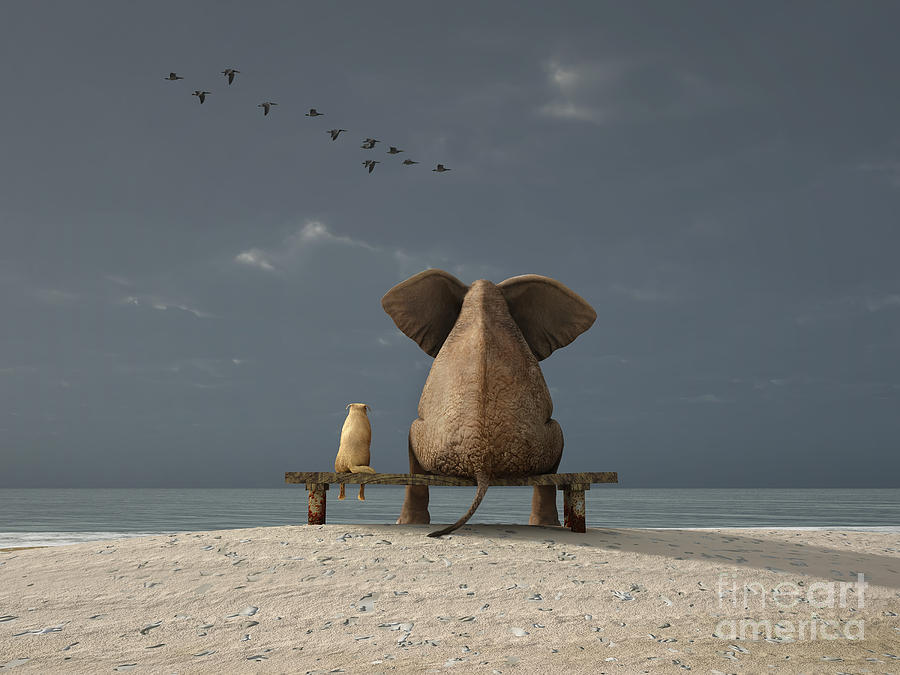 Love Digital Art - Elephant And Dog Sit On A Beach by Photobank Gallery