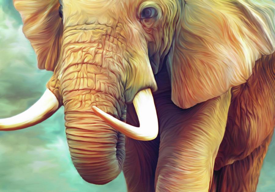 Elephant Illustration Digital Art by Illustration By Shannon Posedenti