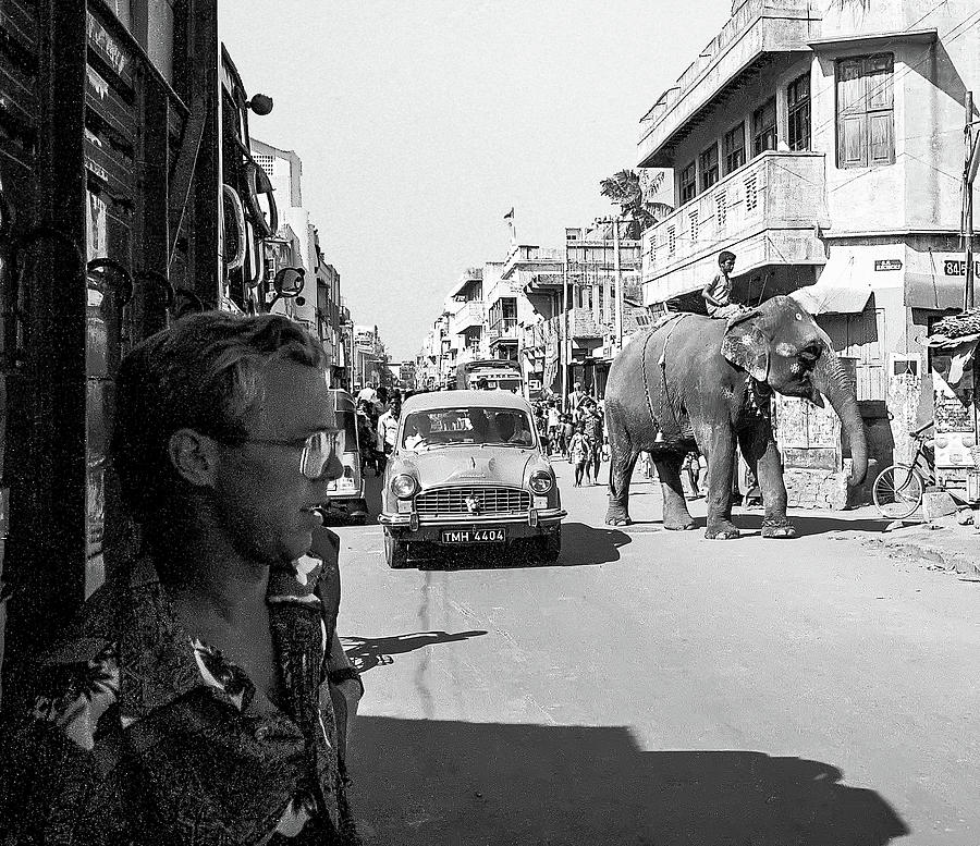 Elephant in the Street and Gary. India by Pete Hendley