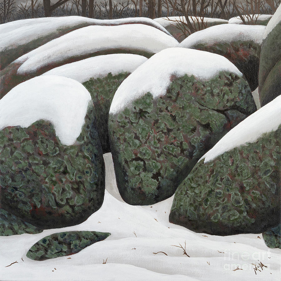 Elephant Rocks in the Winter by Garry McMichael