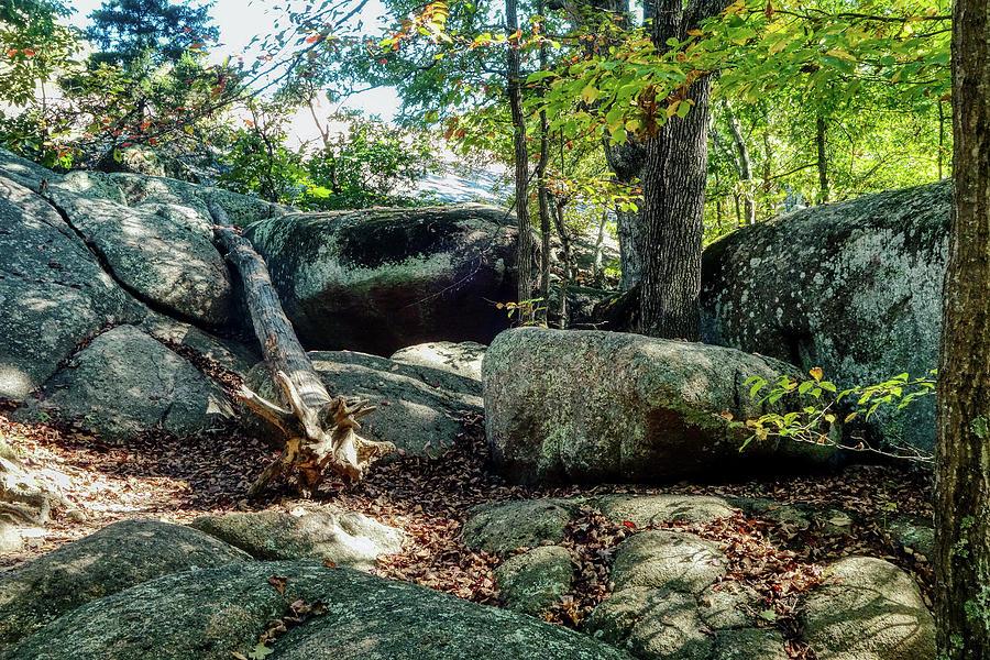 Elephant Rocks Study 9 Photograph