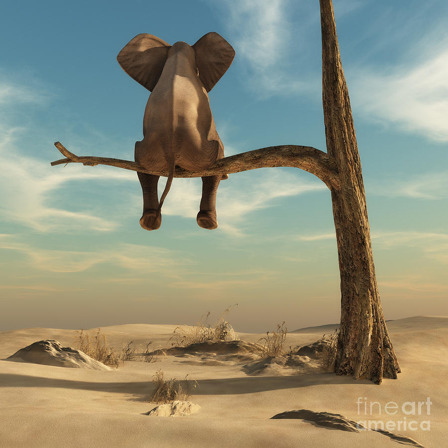 Harmony Digital Art - Elephant Stands On Thin Branch Of by Orla