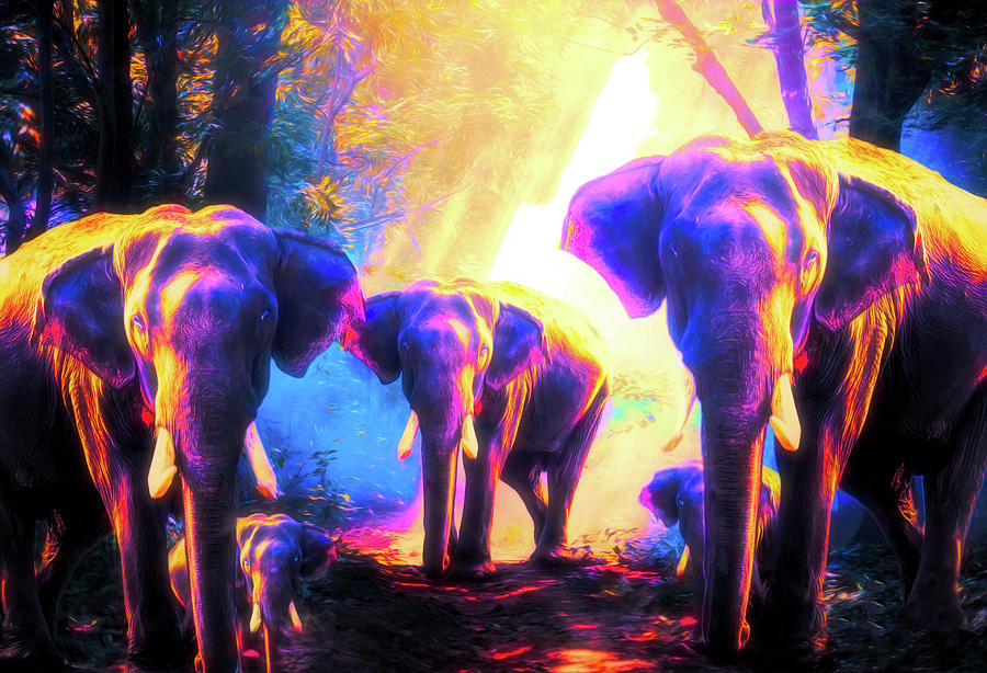 Wild Digital Art - Elephants Family by Jasmina Seidl