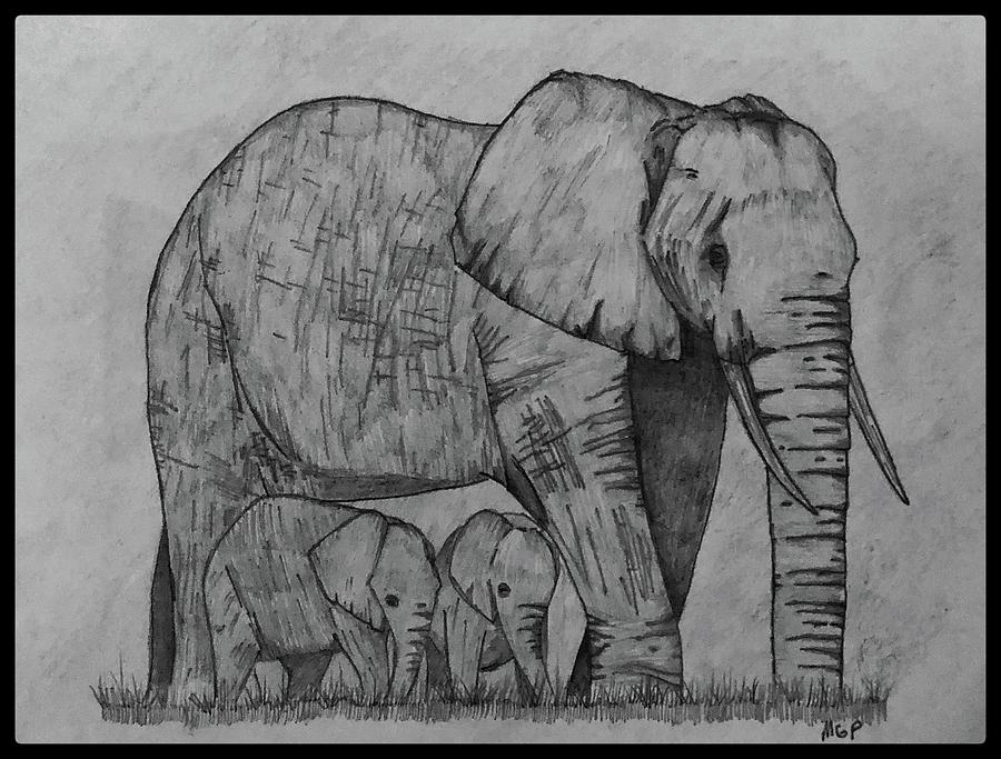 Elephants W/ Border Drawing