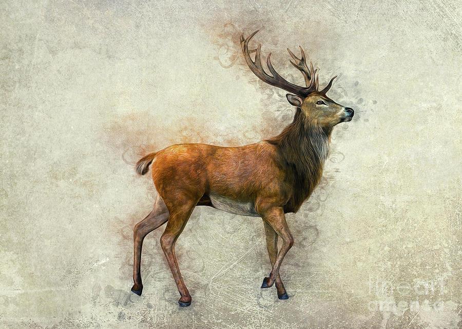 Elk Art by Ian Mitchell