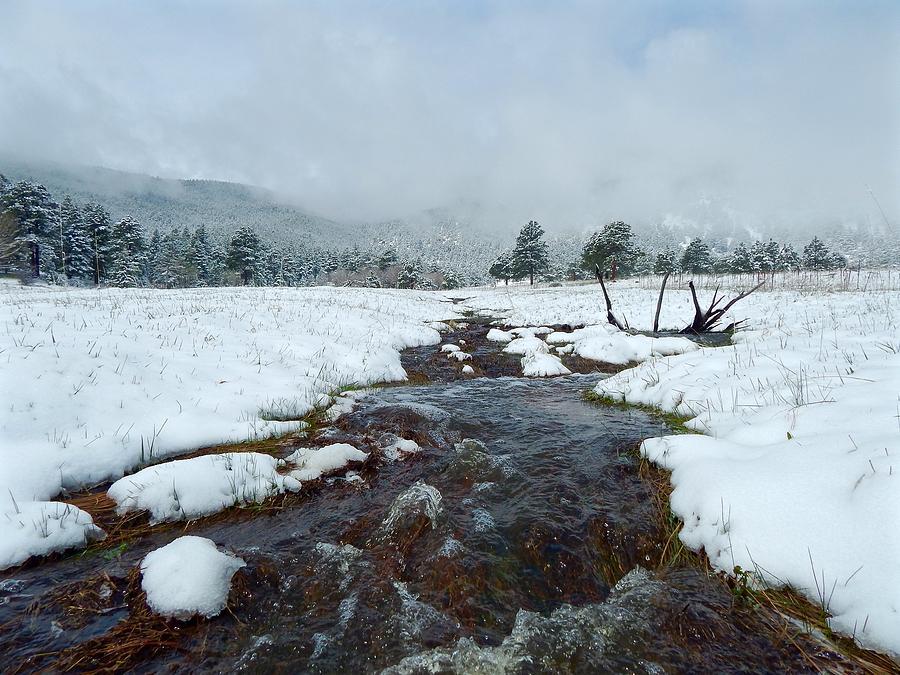 Elk Creek Runoff by Dan Miller