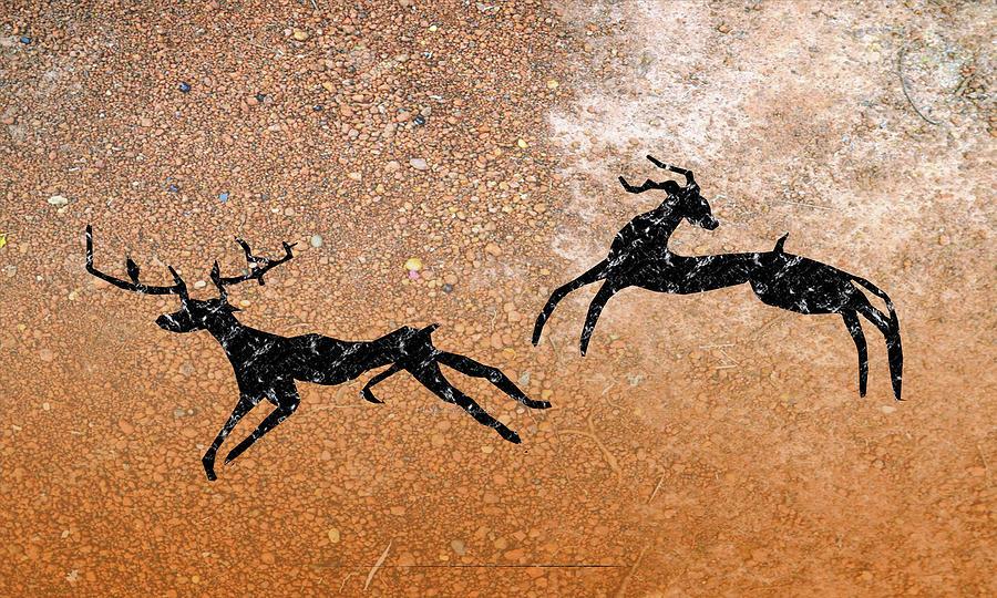 Elks by Asok Mukhopadhyay